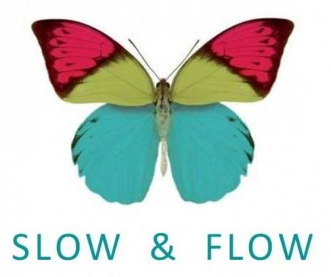 Slow & Flow en Artiem Audax
